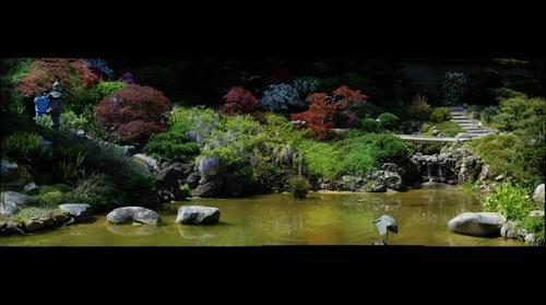 Japanese Garden One