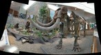mastodon  display st louis mo jim trotter