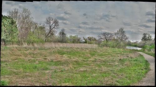 Bobolink Meadow