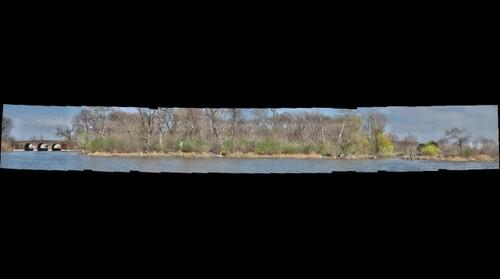 Bobolink Meadow, Jackson Park (TM + NN)