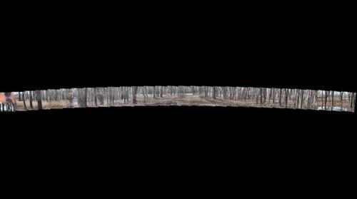 Hegewisch Marsh Gigapan