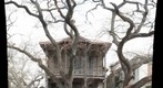 Galveston house with dead trees 2