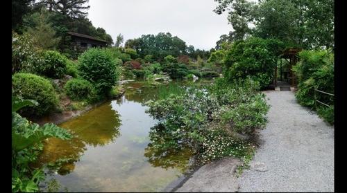 Hakone Gardens (2), Saratoga, California