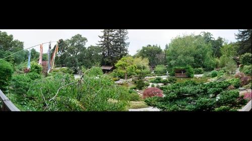 Hakone Gardens (3), Saratoga, California