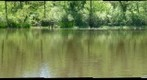 Bondsville Pond May 19, 2009