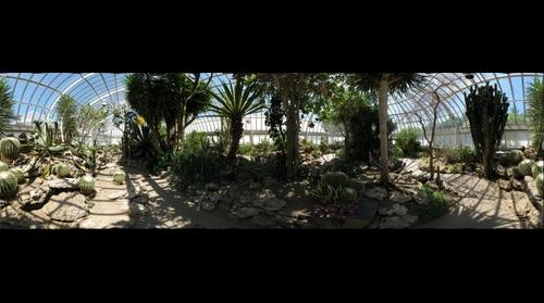 Phipps Conservatory, Cactus room