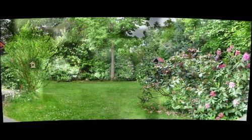 Judith and Helmuts Backyard