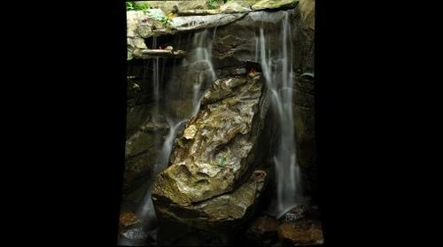 Frog Falls