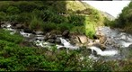 Creeks coming together in the Iao Valley, Maui, HI (l43)