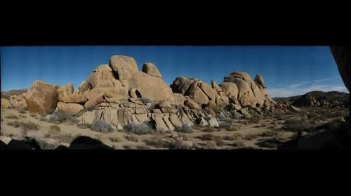 Joshua Tree formation