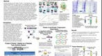 whereRU: Aresty Poster 66 - EVOLUTION OF A NOVEL GENE PAIR FROM A PROTEIC TOXIN-ANTITOXIN MODULE