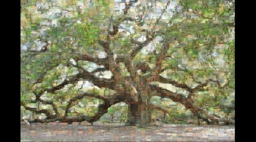 Angel Oak  Mosaic