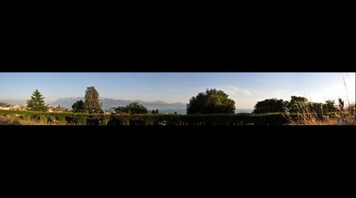 Crêt-de-Montriond (Lausanne)