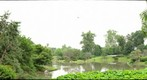 Japanese Gardens, Missouri Botanical Gardens, June 2009