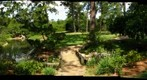 Houston, Texas: Japanese Garden in Hermann Park - Gentle Peace In the Midst of Chaos 2/5