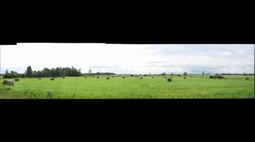 NY Farmland