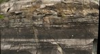 Weathered Sedimentary Rocks near Ticonderoga, NY