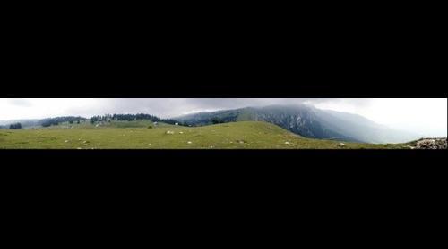 Vlasic - Galica