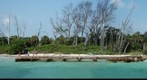 Egmont Key Island, Near Tampa Bay, Florida