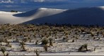 White Sands Test 3