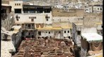 Medieval Tannery of Fes, Morocco