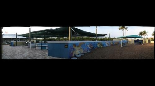 Loggerhead Marinelife Center