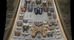 Butterfly and Moth case in Carnegie Museum of Natural History