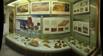 Budleigh Salterton Museum