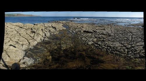 Broadbench, Purbeck Marine Wildlife Reserve