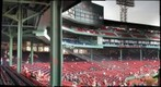 mini fenway 
