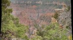 Grand Canyon - North Rim (SE view from Point Royal)