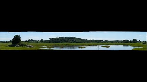 Salt Marsh at Island Road in Essex, MA