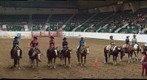 Horse Show Finalists, Minnesota State Fair