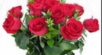 Valentine&#39;s Day roses