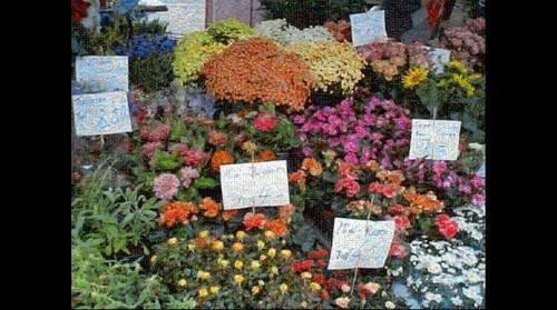 Flower Stand Mosaic