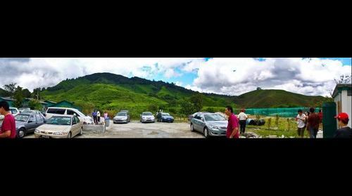 Cameron Highlands Boh Tea Plantation (5)