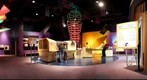 Tech Museum of Innovation, San Jose, California