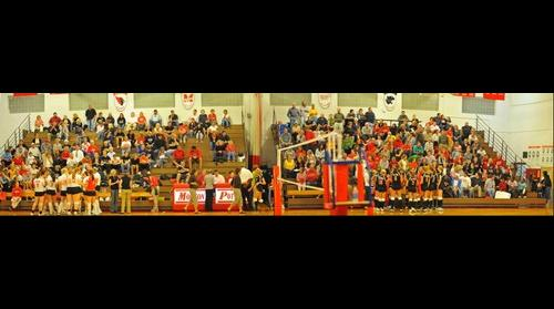 Metamora and Morton Volleyball Fans