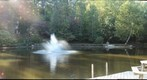 At the Pond (test gigapan)