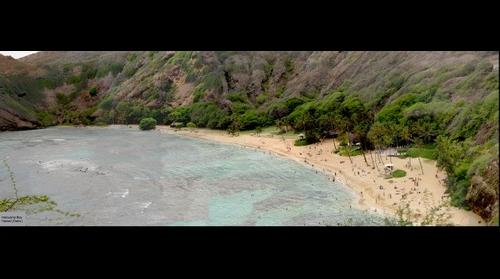 Hawaii -> Oahu -> Hanauma Bay (View from the top lookout point)