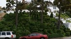 Fantastic Topiary Hill in San Diego