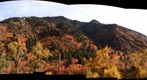 Fall Colors in Big Cottonwood canyon
