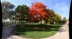whereRU: In Front of Scott Hall in Autumn