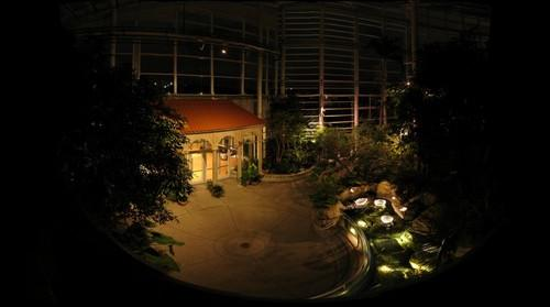 Phipps Conservatory 03