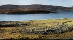 Dunvegan Seals, Macleod&#39;s Tables, Isle of Skye