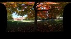 whereRU: Rutgers in Autumn