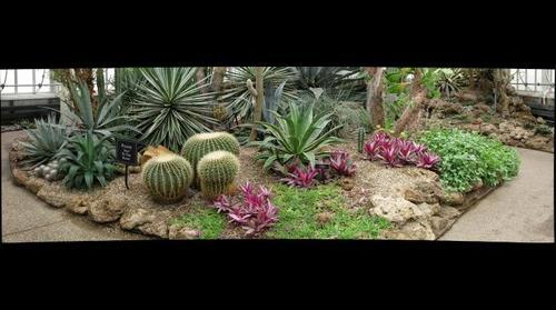 Desert Room - Phipps Conservatory
