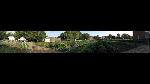 Ingalls Farm - Lynn, MA