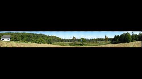 The Farm pond view