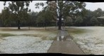 Rice Snowstorm 2009: Field of Snow - a 360-Degree Panorama 3/11